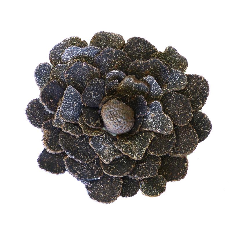 Truffe-noire-Lot-dispose-en-rosace-les-causeries-culinaires-recettes-ancetres-boutique-cours-cuisine-histoire