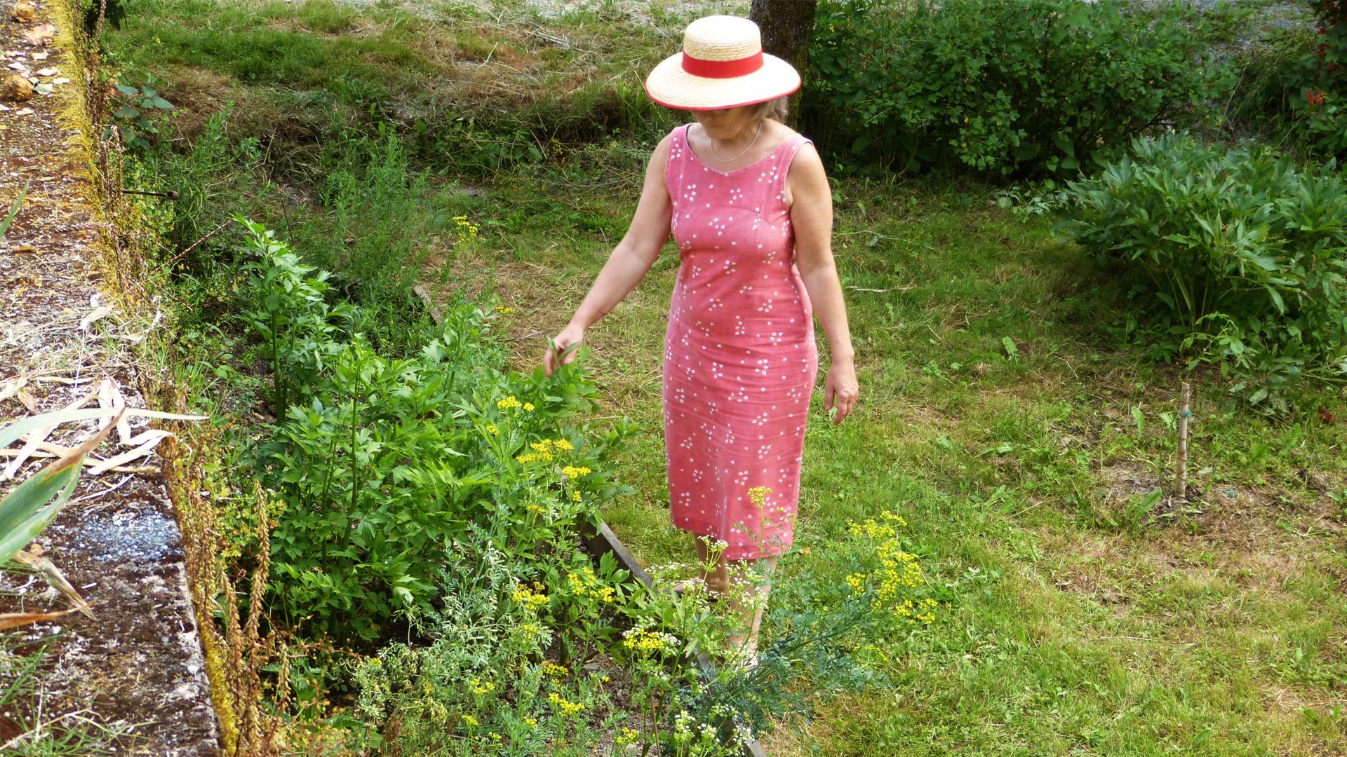 jardin-des-saveurs-villeneuve-sur-tarn-sylvie-campech-les-causeries-culinaires-plantes-aromatiques-anciennes-slide
